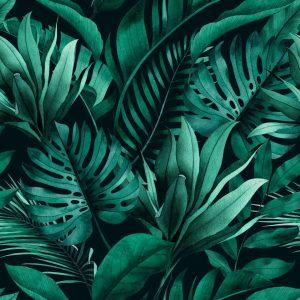Eco-responsabilité Gazette 9 Sitour